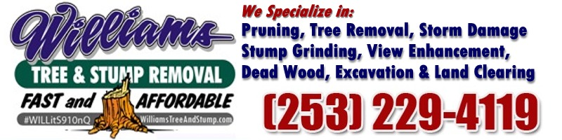 Williams Tree & Stump Removal
